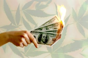 Hand holding 4 one hundred dollar bills that are on fire in front of a background of marijuana leaves