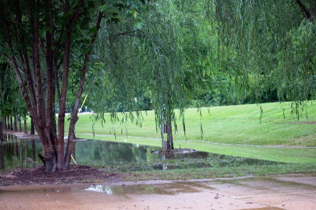 Flooded dog park on McElroy Drive